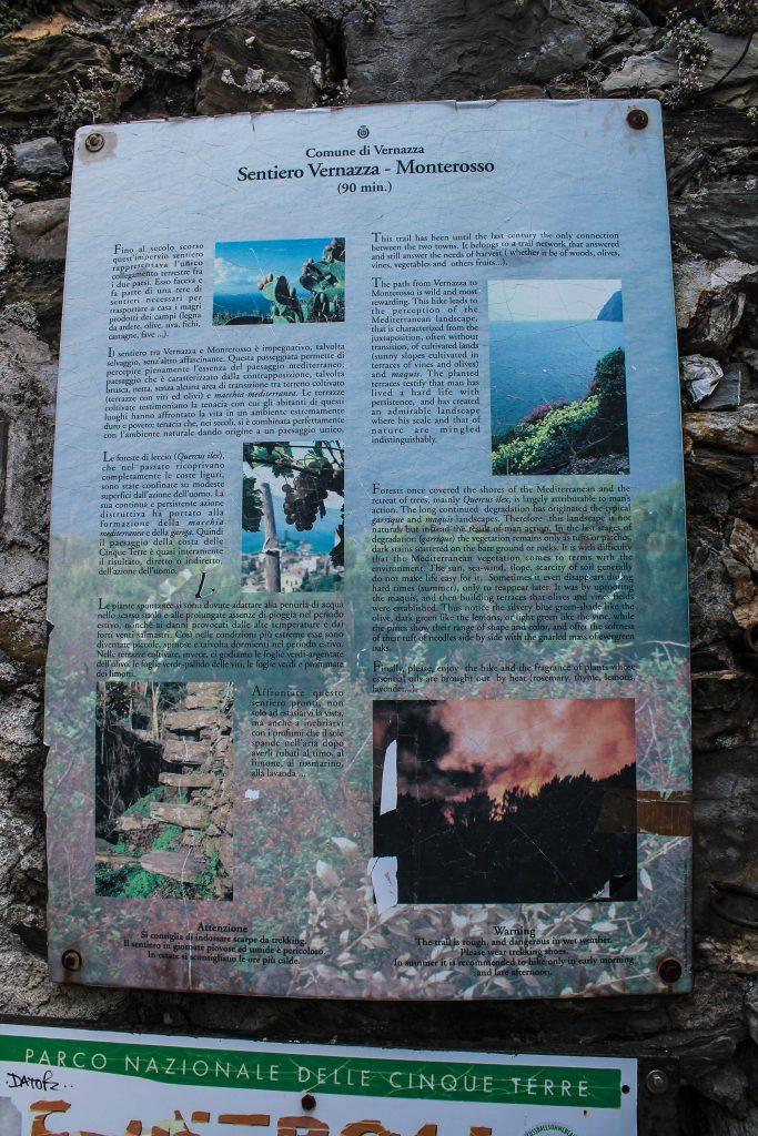 Dos días en Cinque Terre-22